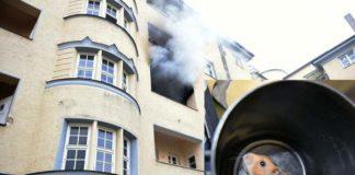 Hamsterdame bei Zimmerbrand gerettet