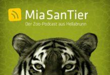 """Hellabrunn startet mit seinem neuen Zoo-Podcast """"Mia san Tier"""""""