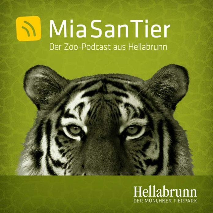 Hellabrunn startet mit seinem neuen Zoo-Podcast