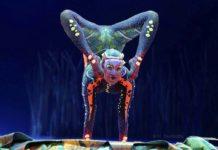 """Cirque du Soleil """"Totem"""" München 2020"""