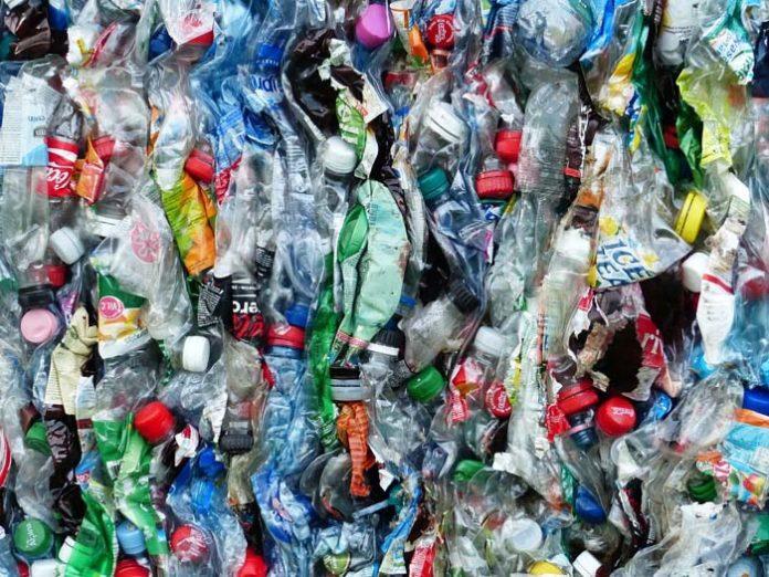40 Tage ohne Kunststoff: Umweltreferentin ruft zum Plastikfasten auf