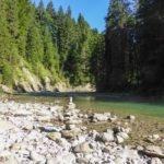 Nachhaltig und kostenlos: Neue Rangerführungen im Naturpark Ammergauer Alpen