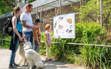 Besuch mit Hund in Hellabrunn