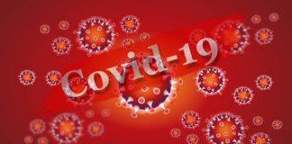 Münchner Tropeninstitut beginnt Stichprobenanalyse zur Verbreitung der Corona-Pandemie