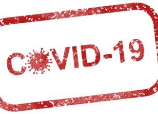 Wie viele Menschen sind immun gegen das neue Coronavirus?