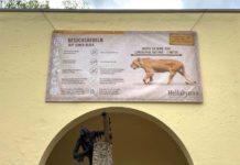 Hellabrunn ab 11. Mai wieder für Besucher geöffnet – Schutzkonzept vorgestellt