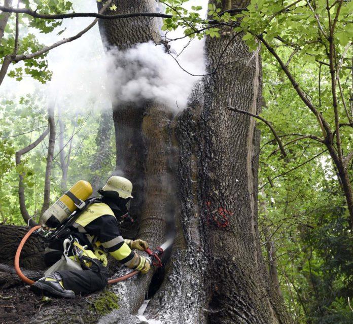Kurioser Einsatz der Feuerwehr an der Maximiliansbrücke: