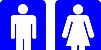 Weitere feste Toiletten in städtischen Grünanlagen