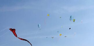 Drachenfest für Kinder und Familien am 19. und 20.9.2020 im Riemer Park