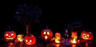 Herrmann mahnt zur Zurückhaltung an Halloween