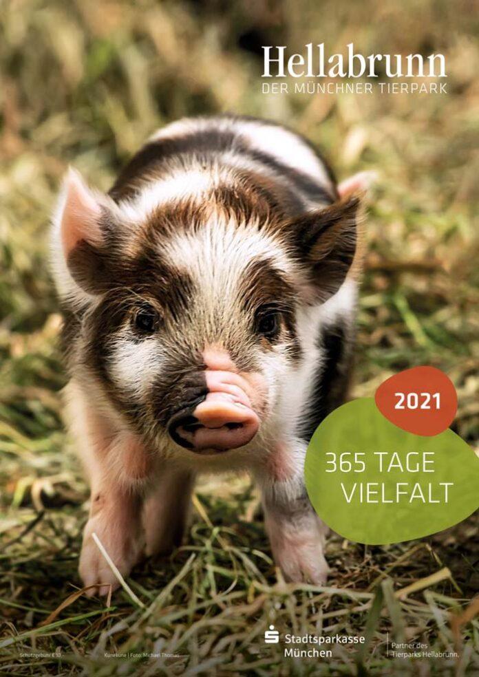 Die Vielfalt der Hellabrunner Tierwelt für zu Hause: Der neue Tierpark-Kalender ist da