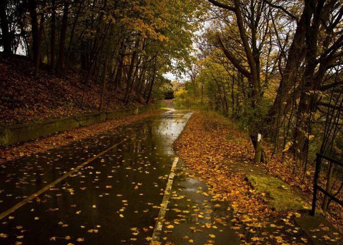 Unterwegs im Herbst: Langsam fahren, Licht an!