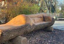Recycling in Hellabrunn: Bäume zu Bänken