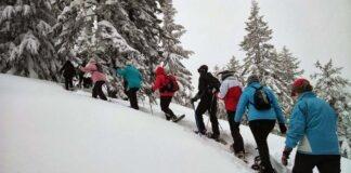 Tourengehen am Taubenstein im Spannungsfeld von Tourismus, Naturschutz und Sicherheit