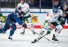 EHC Red Bull München: München verliert Derby gegen Augsburg