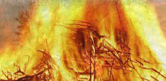 Christbaumsammelplatz geht in Flammen auf
