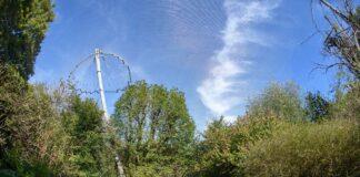 Aviäre Influenza: Vorsorgliche Maßnahmen im Tierpark Hellabrunn