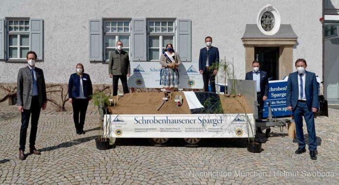 Spargelsaison 2021: Wirtschaftsminister Hubert Aiwanger sticht ersten Spargel in Schrobenhausen