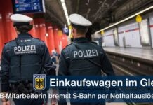 Einkaufswagen im Gleis - S-Bahn kommt rechtzeitig zum Stehen