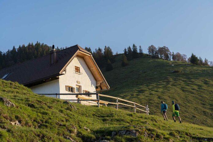 Franz Marc entdecken: Spurensuche auf dem Berg und im Tal