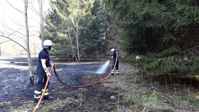 Waldperlach: Waldboden in Flammen