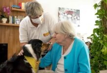 Fachkräftemangel in der Pflege: ASB muss Ambulante Pflege am Standort München-Westpark einstellen