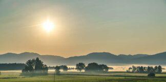 Natursommer im Filz: Loisach-Kochelsee-Moore als einmalige Landschaft erleben