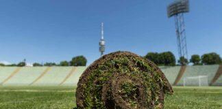 Rasenverkauf 2.0 - Ein Stück Oly für den eigenen Garten