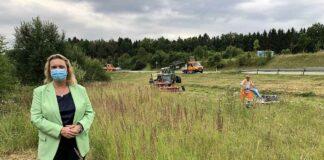 Mehr Artenschutz an Bayerns Straßen