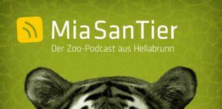 """Mia San Tier – der Zoopodcast aus Hellabrunn"" feiert 100.000 Abrufe"
