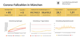 Update 12.08.: Entwicklung der Coronavirus-Fälle in München – 7-Tage-Inzidenz liegt bei 28,1