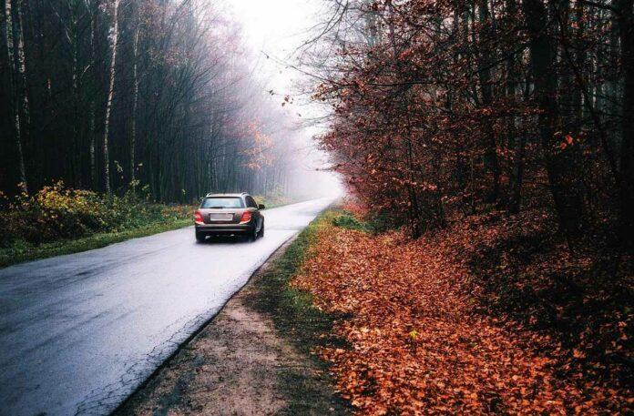 Sicher durch den Herbst