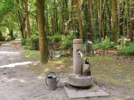 Städtische Friedhöfe: Gießwasser wird abgedreht
